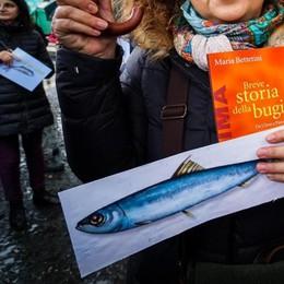 Le sardine, i partiti  Brecht e Nenni