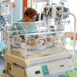 Terapia neonatale  Il Valduce: «Non chiudiamo»