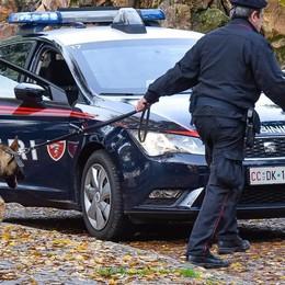 Cocaina in camera d'albergo e in auto  Uomo di 39 anni arrestato a Turate