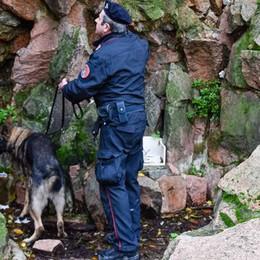 Como, fontana riempita di droga  Il cane la fiuta (VIDEO)
