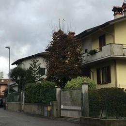 I ladri acrobati tornano a Cantù  Alzate, sesto blitz nella stessa casa