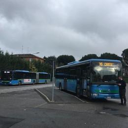 Autobus, ecco come cambia Cantù  «Tre capolinea e si viaggerà meglio»