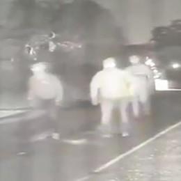 Villa Guardia, ladri scatenati  Ripresi dalle telecamere   GUARDA IL VIDEO
