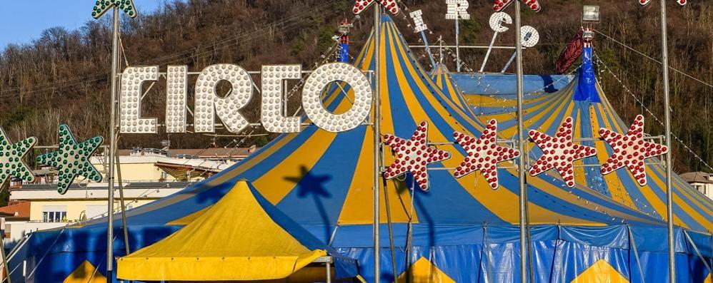 La magia del circo  Lo spettacolo è doppio