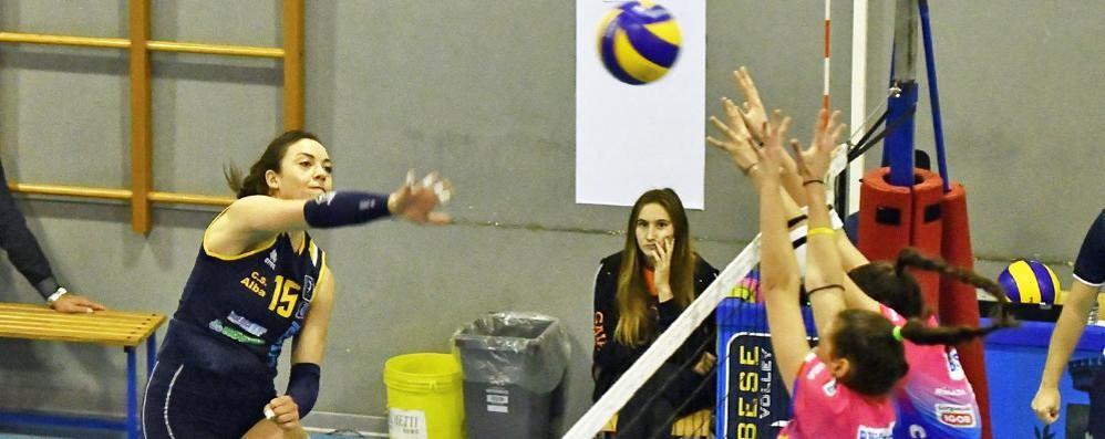 Tecnoteam, è una formalità Un 3-0 al Volley Parella e via