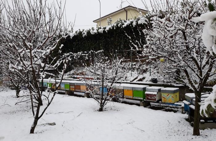 CASATENOVO L'azienda agricola Maggiociondolo