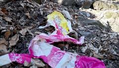 Tavernerio, allarme incendi  «Non abbandonate i rifiuti»