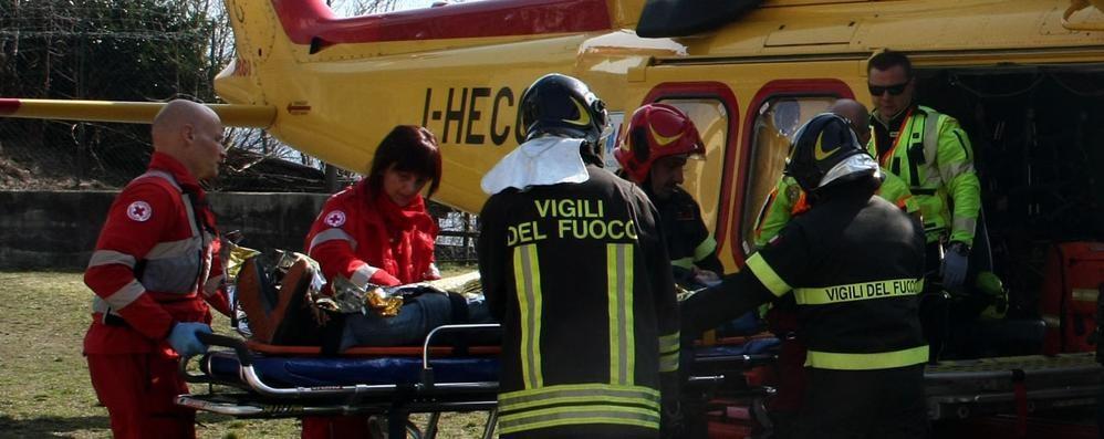 Plesio, paura per uomo caduto dall'albero  Ricoverato con l'elicottero a Gravedona