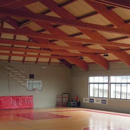 Volley e basket senza palazzetto  Cantù, spunta l'ipotesi del Caimi