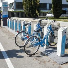 Como, lo scandalo   delle bici dimenticate