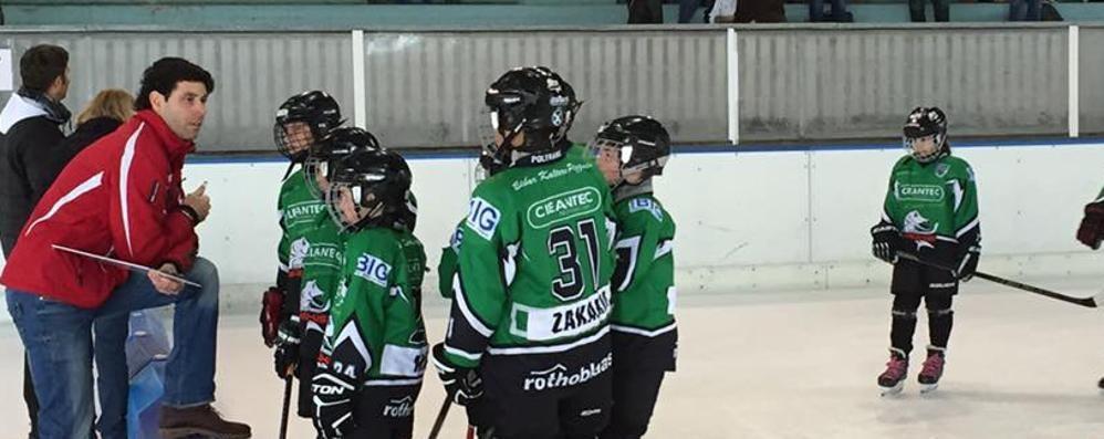 Hockey, torna il Gosetto  dopo un anno di stop