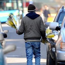 Venditori di mimose  Multe per 18.000 euro  Sequestrati 789 mazzi