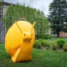 Chiocciola e rondini giganti  L'arte invade Cernobbio