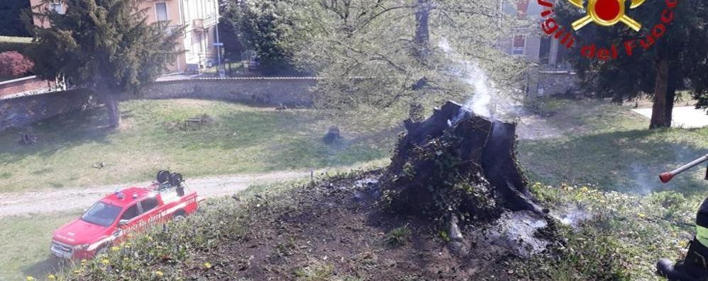 Incendio nel parco Vigili del fuoco a Cantù