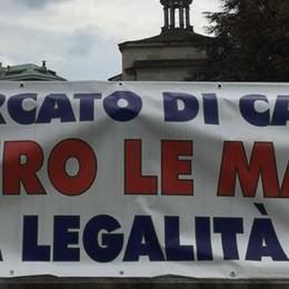 'Ndrangheta a Cantù dopo la sentenza  «Scenario spaventoso, ora iniziative»
