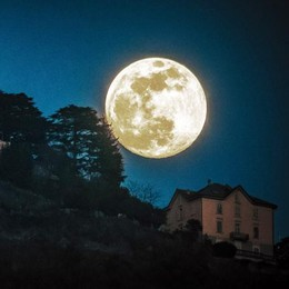 "La luna ci salverà  Un ""Ordine"" speciale"