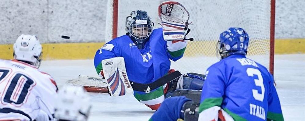 Stillitano: «Hockey o bob? Devo ancora decidere»