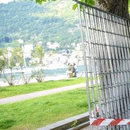 Dopo due anni si svegliano, via le grate  Rimosse le prime recinzioni sul lungolago