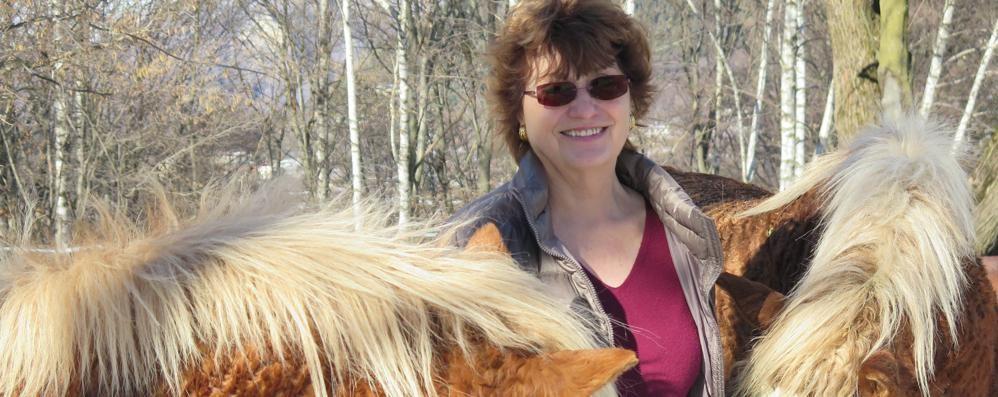 Ha salvato i cavalli del Bisbino  Luigia lascia dopo dieci anni
