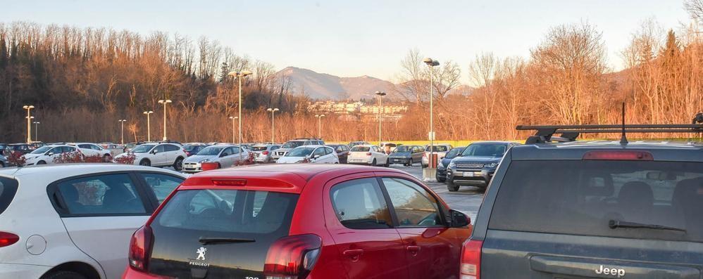 Sant'Anna, i parcheggi non bastano  «E i dipendenti arrivano in ritardo»