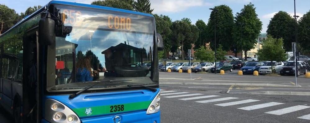Molesta ragazza di 15 anni sul bus   Dopo le urla scende dal bus e fugge