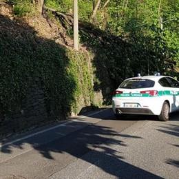 Albero cade su via per San Fermo Mattinata di caos in città