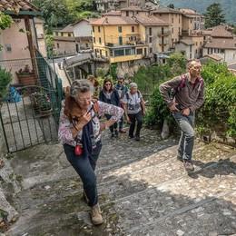 Un mese in cammino tra alberi e cultura