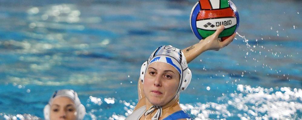 Romanò: «Non è stata  la vera Como Nuoto»
