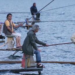 Pesca vietata, sequestrati 150 kg di pesce  La Provincia li dona agli enti religiosi