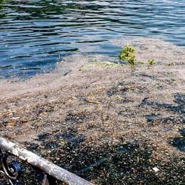 Lago sporco, la beffa dei battelli  Uno fuori uso e l'altro resta fermo
