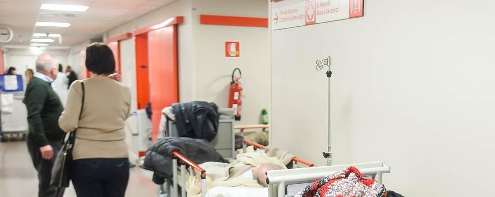 Lurate, Bulldog azzanna  le proprietarie in due all'ospedale