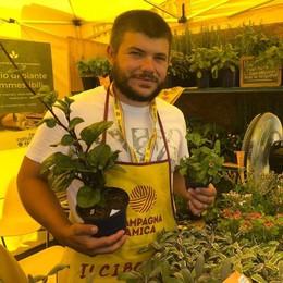 Cambiamento del clima  E sul Lario si coltivano  le piante esotiche