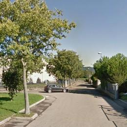 Furto da 10mila euro in carpenteria  Ladri e vandali nelle ditte di Colverde