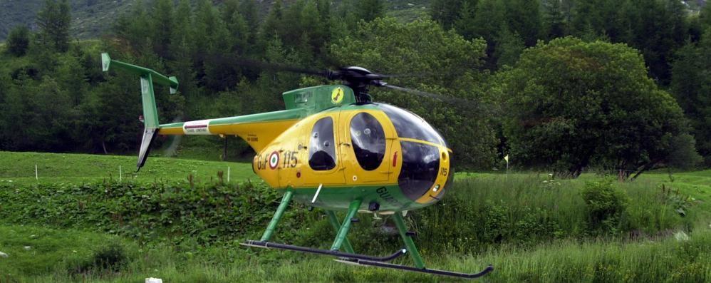 Blitz anti spaccio nei boschi   Sequestrati soldi e droga