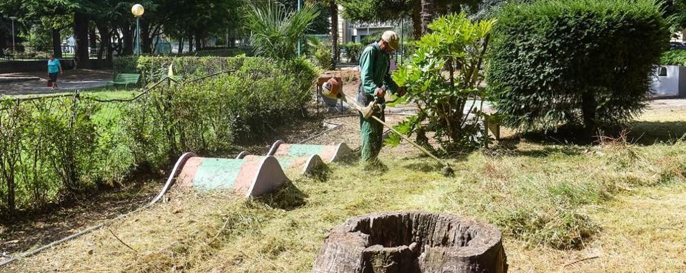 Giardini a lago, li abbiamo svegliati  Operai al lavoro dall'alba per pulire