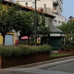 Mariano, piazza Roma pulita  E le aiuole vietate ai cani