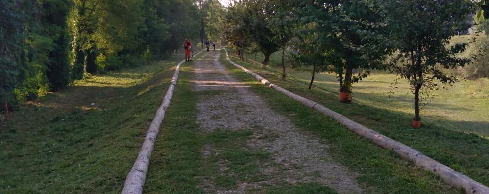 Volontari al lavoro nei parchi  «Risparmiate migliaia di euro»