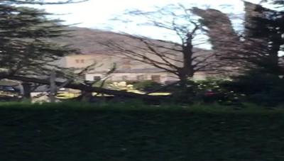 Canzo albero caduto