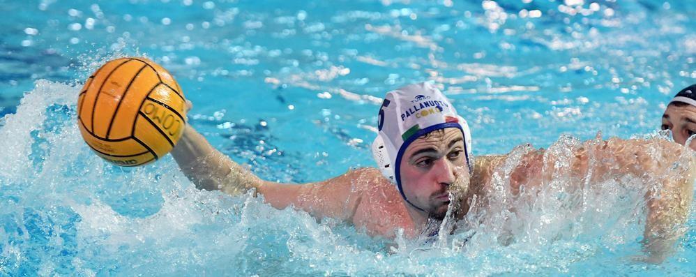 Como Nuoto a Monza  Affronta il Camogli