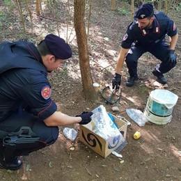 Ancora droga tra Merone e Monguzzo  Scoperto un bivacco nei boschi