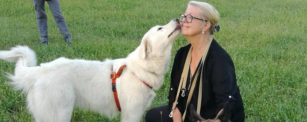 Erba, soffrono anche i cani del canile  Il Comune cerca un educatore cinofilo