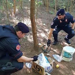 Uccisa nei boschi dello spaccio  Convivente condannato a 18 anni