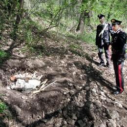 Eupilio, omicidio nel bosco  C'è un secondo arresto