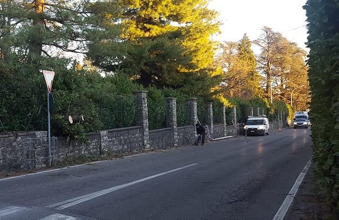 Albero caduto in via Brianza ad Albavilla