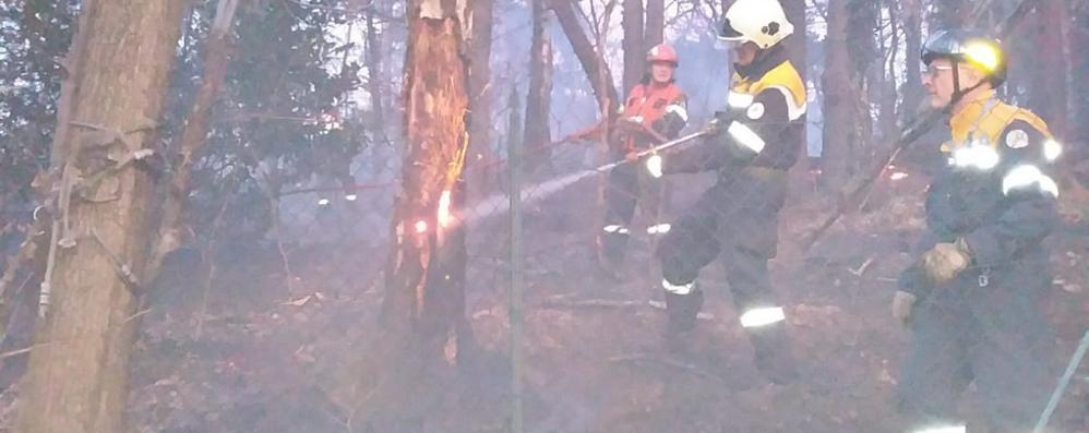 Carimate, incendio nei boschi A fuoco un ettaro di verde