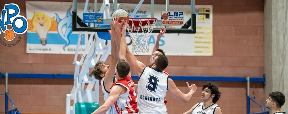 Il basket ferma da domani  i campionati regionali