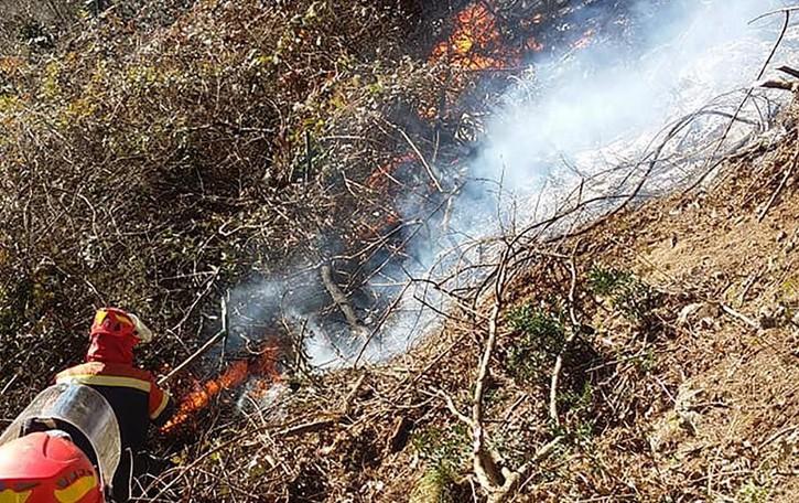 Grandola, vegetazione in fiamme  Al lavoro i pompieri di Dongo e Menaggio