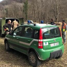 Castelmarte, gestione illecita di rifiuti  Tre denunciati dai carabinieri forestali