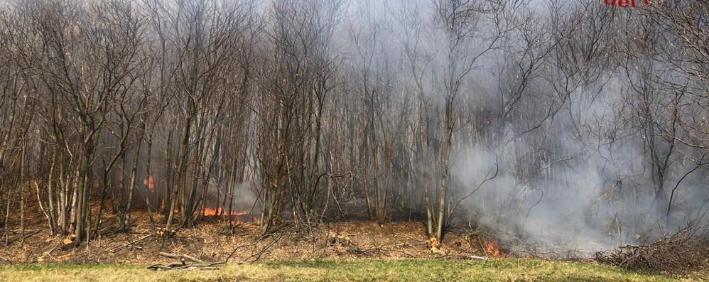 Bruciano i boschi  attorno a Bizzarone