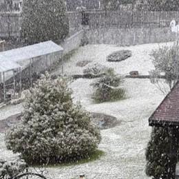 Altro che primavera  In Valle Intelvi nevica   GUARDA IL VIDEO